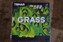 grass def (4)